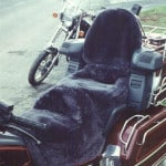 Honda Goldwing GL1500 1988 - 1999 Sheepskin