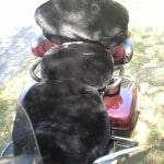 Yamaha Royal Star Venture XVZ 1300 TF 1999 - 2007 Black Custom Made Sheepskin Motorcycle Seat Cover with Pillion Backrest