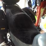 Kawasaki GTR 1400 2007- Black Sheepskin Motorcycle Seat Cover