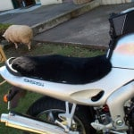 Triumph Sprint ST Gel Seat 2004 Black Sheepskin Motorcycle Seat Cover