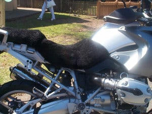 BMW R 1200 GS 2004 Black Sheepskin Motorcycle Seat Cover