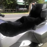 Can Am Spyder RT 2010 Black Sheepskin Motorcycle Seat Cover