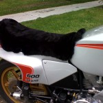 Ducati 600 SL Pantah 1979-1985 Black Sheepskin Motorcycle Seat Cover